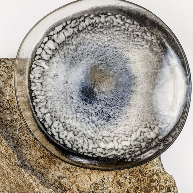 Black and White Resin Plate