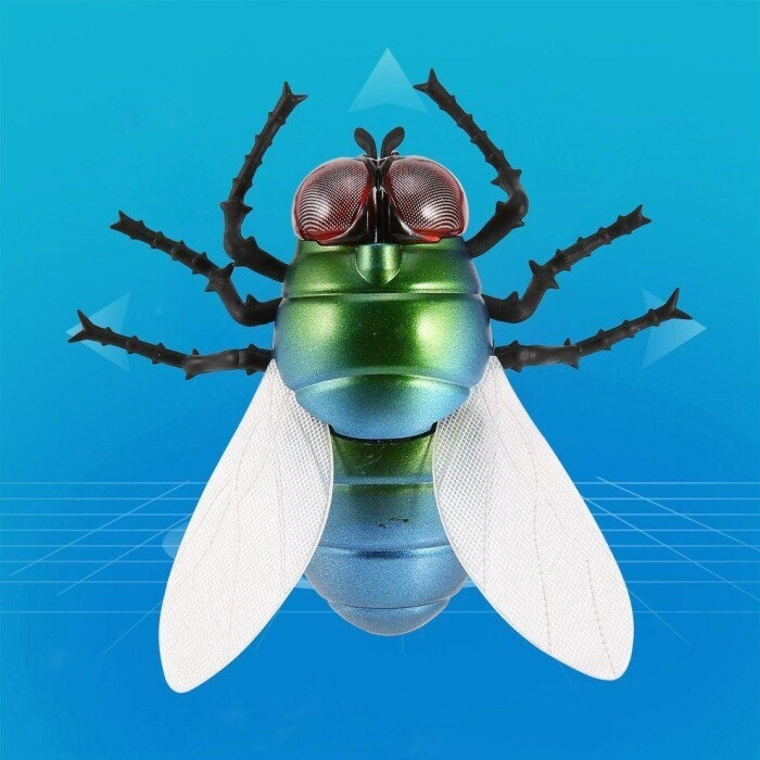 Fly Toy RC