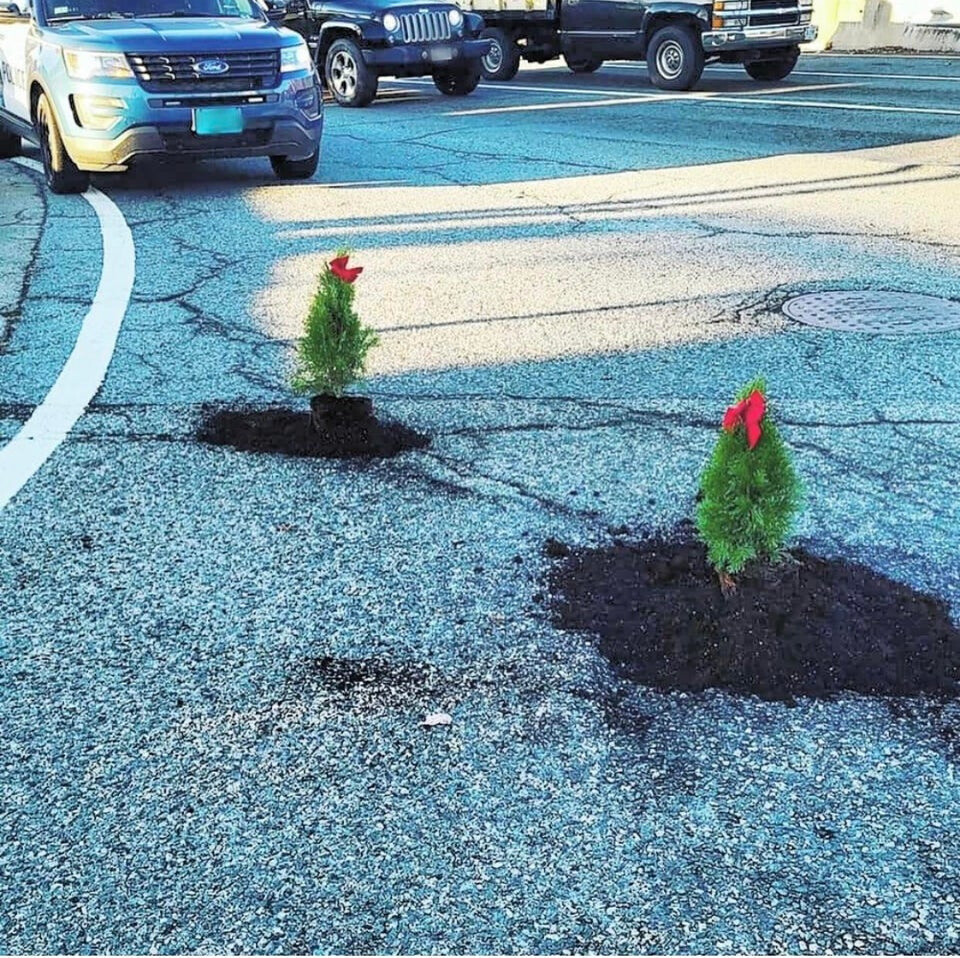 Someone in my town planted Christmas trees as a way to get officials to deal with potholes.