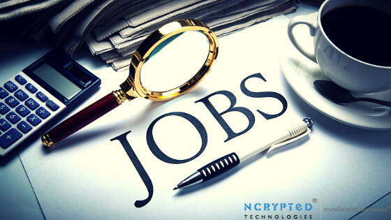 What Things you must know before buying the Job Portal Script?