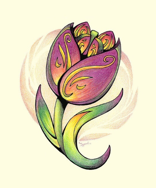 Colorful Tulip Flower Colored Pencil Drawing Illustrative Art