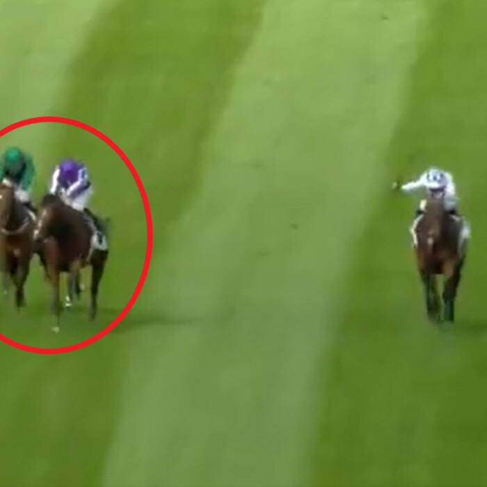 Watch 'most exciting race ever' won by St Mark's Basilica after dramatic stewards' enquiry in Irish Champion Stakes