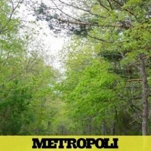 Seis propuestas para una escapada 'slow' y sin aglomeraciones a la Sierra de la Demanda