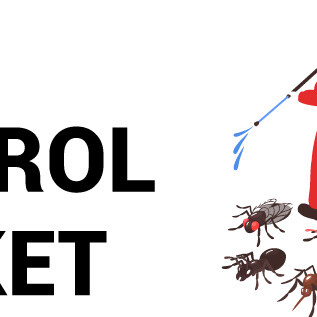 Pest Control Market Size, Share & Industry Analysis, By Pest Type (Insects, Termites, Rodents, Others), Method (Chemical, Mechanical, and Biological),