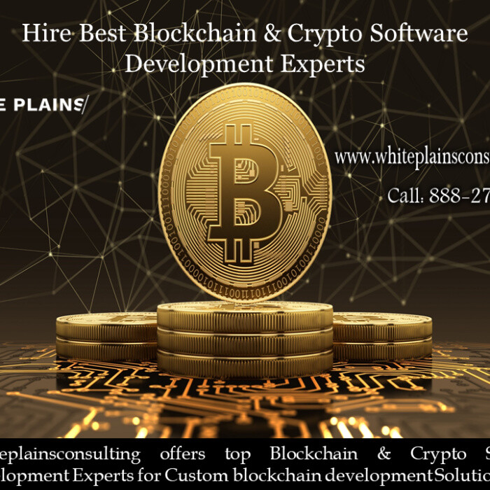Hire Best Blockchain  Crypto Software Development Experts.png