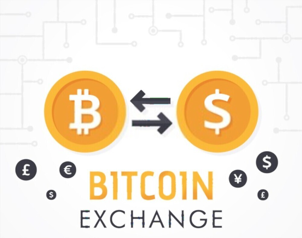 Increase your business standards by integrating with Bitcoin exchange platform software