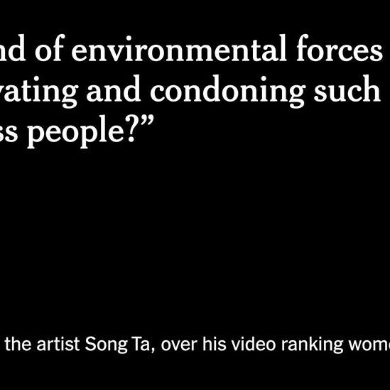 Furor in China Over Artwork Ranking Women by Their Looks