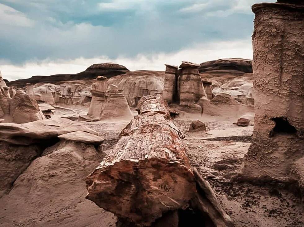 Guided Tours of the Bisti Badlands, New Mexico   Laurel Christine
