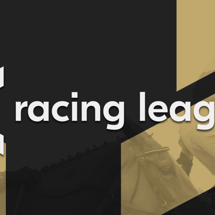 Racing League odds: Bookies predict two-horse race in massive £2million finale to blockbuster series at Newcastle