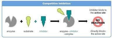 Global Enzyme Inhibitor Market 2021: COVID-19 Impact Analysis and Industry Forecast Report, 2027