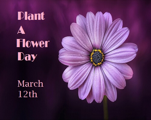 Plant A Flower Day