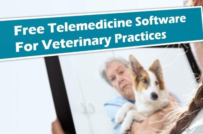Free Veterinary Telemedicine App To Be Quarantine Ready