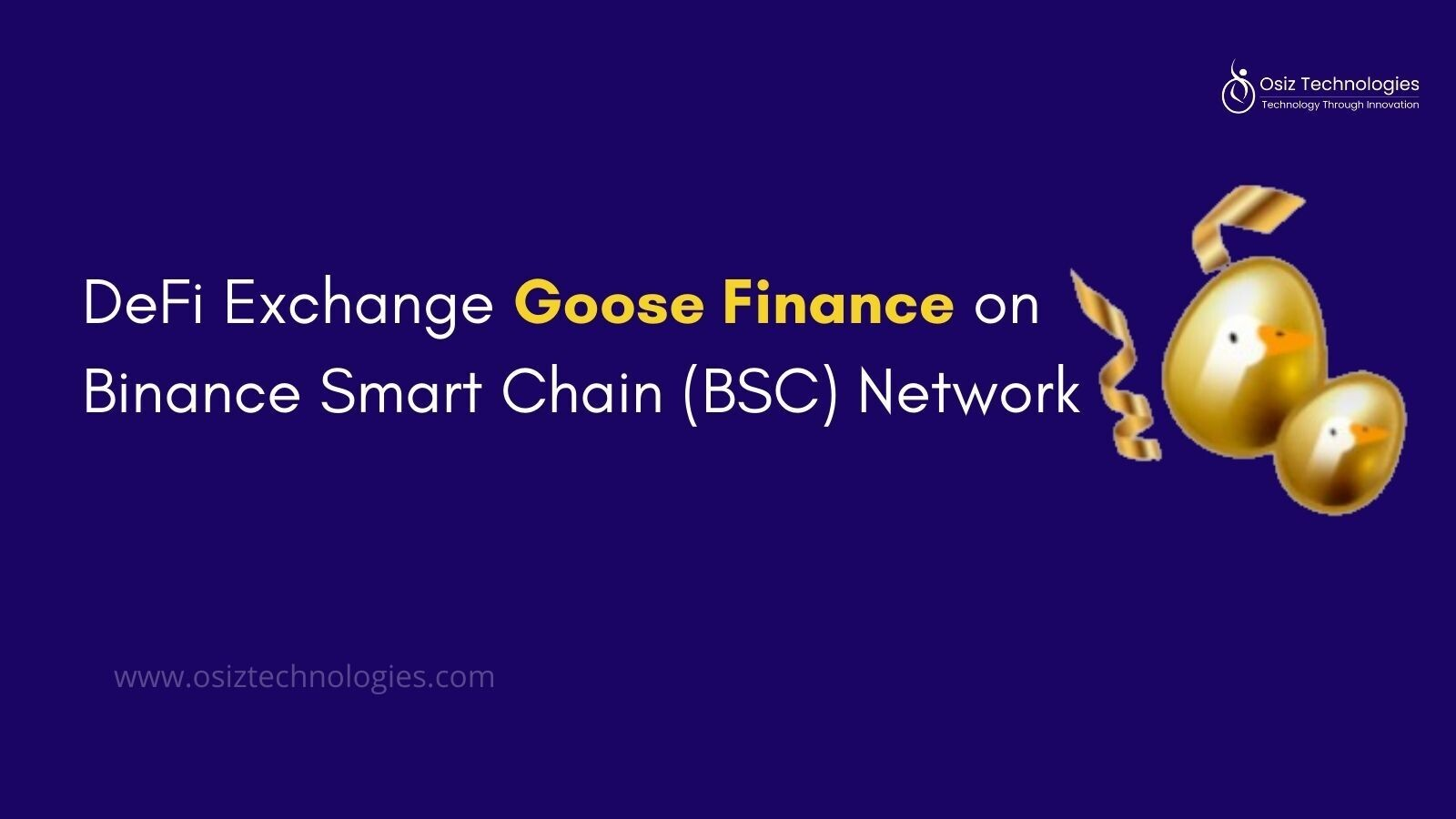 What is So Special in Goose Finance DeFi Exchange?