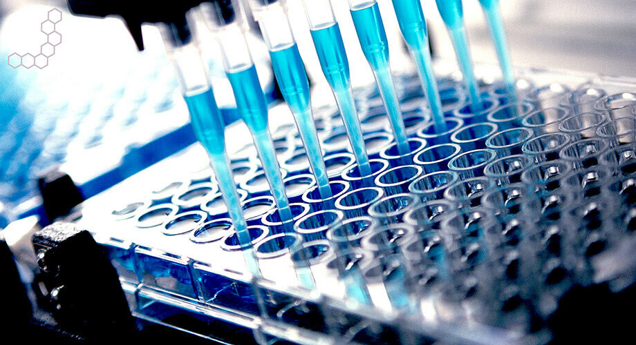 Bioanalytical Testing Services Market Report, Industry Overview, Growth Rate and Forecast 2026