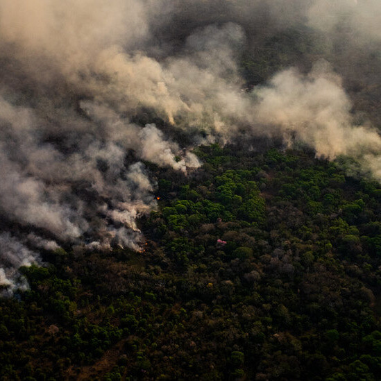 Brazil Faces Severe Drought as Covid Deaths Approach 500,000
