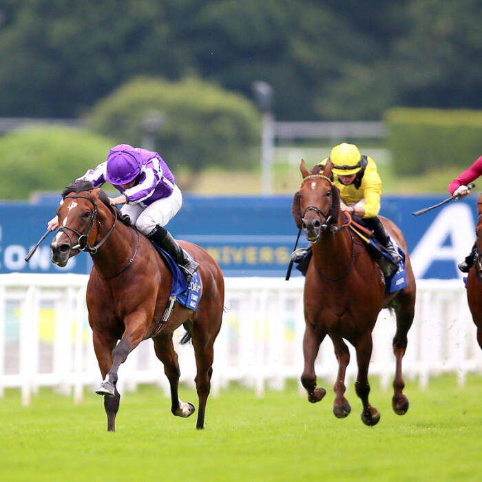 Hot favourite St Mark's Basilica ruled OUT of Juddmonte International at York – with Love taking his place