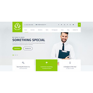 Buy One Page WordPress Theme and its Significance for Business