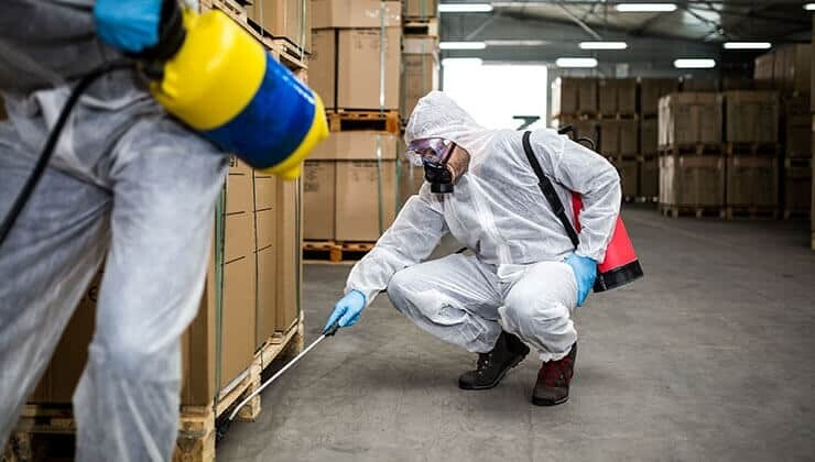 Rodent Control Market by Type, Application, Growth Analysis   Industry Forecast 2020-2027