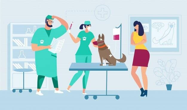 Rolling Out a Membership Program at Your Veterinary Practice