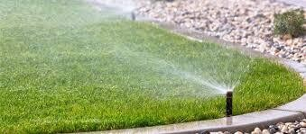 5 Reasons Why you would like a Lawn system